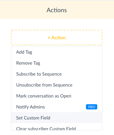 ManyChat Screenshot Set Custom Field