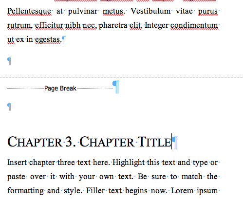 Microsoft Word Screen Shot Page Breaks before Chapters