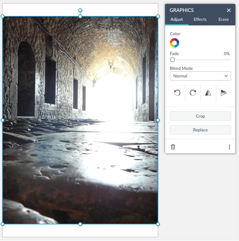 Picmonkey Screen Shot Editor Window with Image Overlay